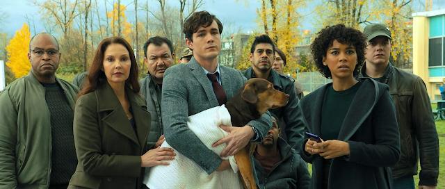 A Dog's Way Home (2019) Dual Audio [Hindi-DD5.1] 720p BluRay ESubs Download