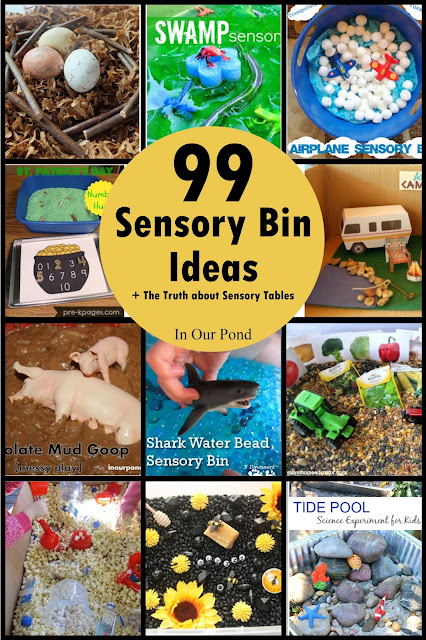 99 Sensory Bin Ideas + The Truth About Sensory Tables from In Our Pond