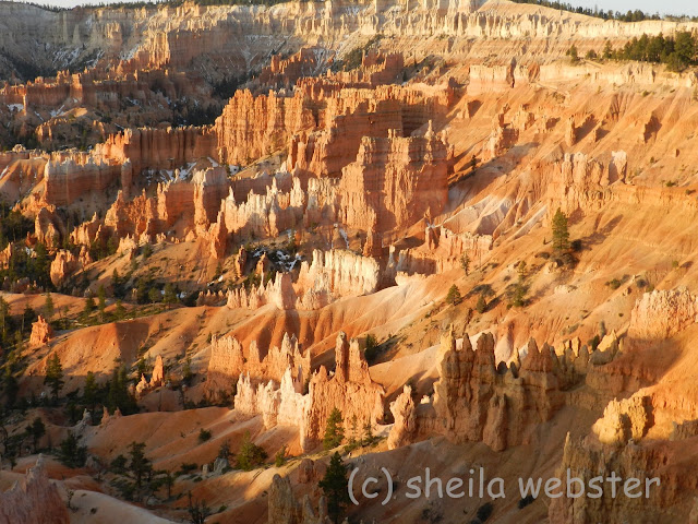 The rising sun casts shadows among the hoodoos.