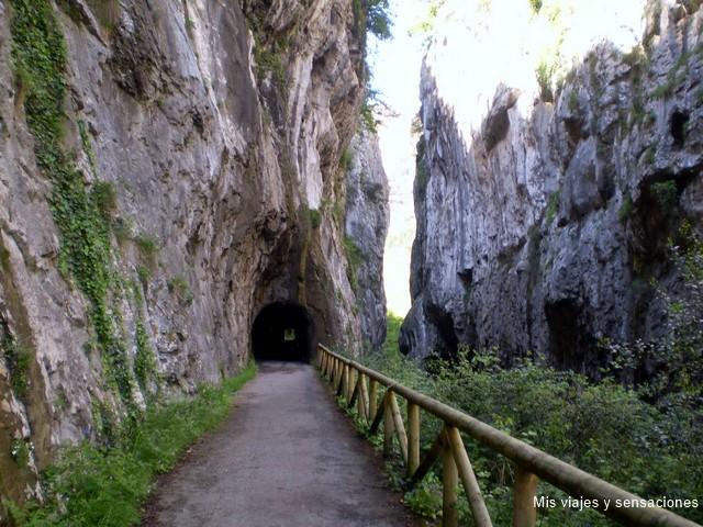 Desfiladero de Peñas Juntas, La senda del oso, Asturias