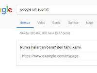 Cara Cepat Kilat Agar Artikel Terindeks Google Dalam Hitungan Detik