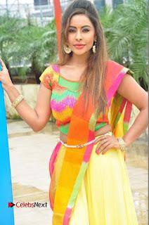 Actress Sri Reddy Pictures at Dandiya Navrang Utsav 2016 Curtain Raiser Event  0051.JPG