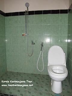 toilet family room