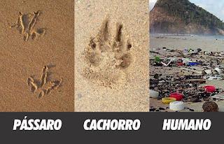 Foto retangular dividida em três partes. Título: Cada animal deixa sua pegada...Da esquerda para a direita: sobre a areia marrom, duas marcas em riscos triplos, abaixo lê-se: Pássaro; sobre areia clara, uma pisada profunda, abaixo lê-se: Cachorro; restos de entulhos e lixo plástico na beira da praia, ao fundo, um costão com pouca vegetação sobre a superfície, abaixo lê-se: Humano.