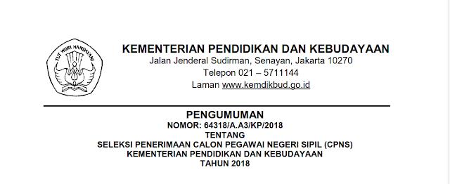 Seleksi Penerimaan CPNS Kementerian Pendidikan Dan Kebudayaan Tahun 2018