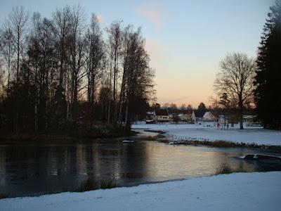 Skadad ludmila vilar i vinter