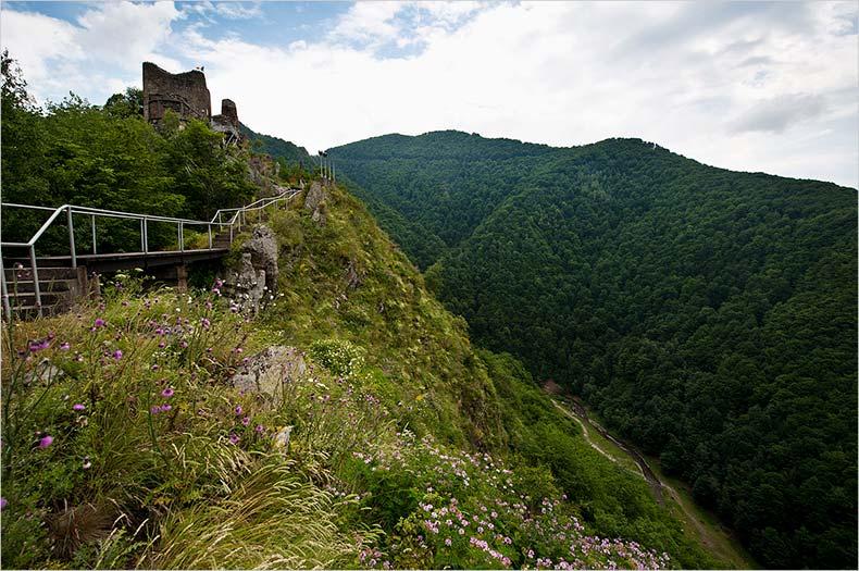 Замок Поенари 2