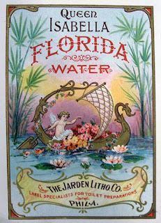 Charged Waters: Florida Water