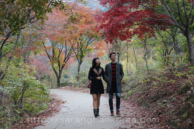 Couple enjoying the scenic walkway of the garden of the morning calm