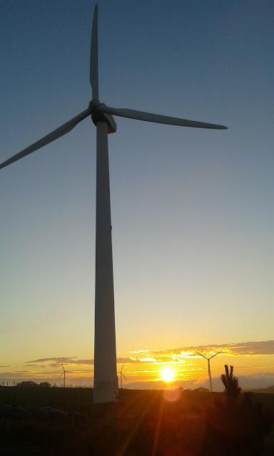 puesta de sol en un molino de viento