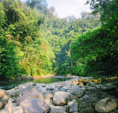 Bukit Lawang, North Sumatera2
