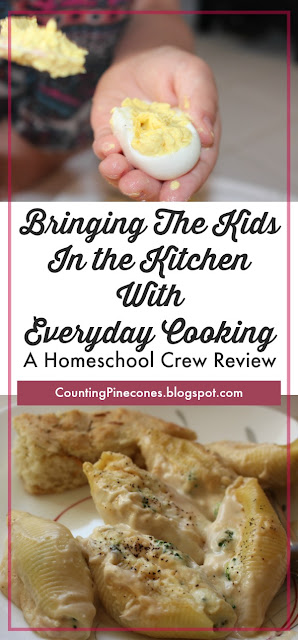 #hsreviews  #homemaking #chores