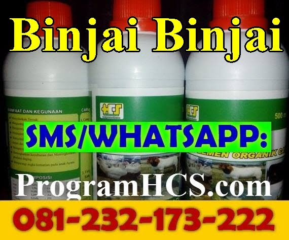 Jual SOC HCS Binjai