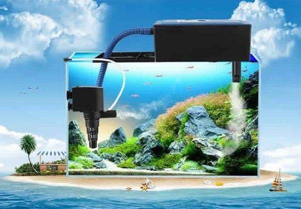 Gambar Filter Aquarium Air Tawar Yang Baik eksternal