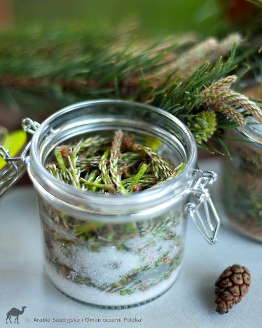Syrop z młodych pędów sosny na przeziębienie