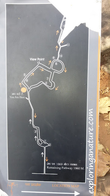 Location Map of Bhimbetka- The Rock Shelters