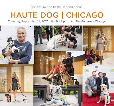 Haute Dog Chicago