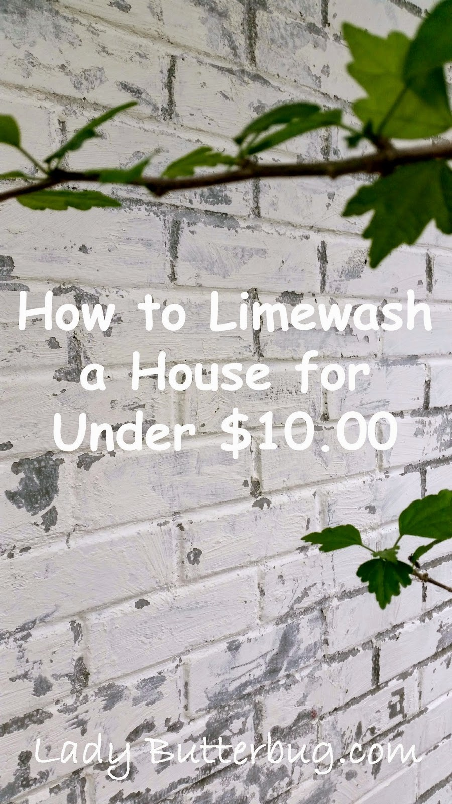 How I Limewashed My House for Under $10.00 ~ | Lady erbug How To Lime Wash Exterior Brick on lime wash kitchen, lime wash pix, lime wash stone, lime wash colonial, lime paint brick house, lime wash traditional home, lime wash paint recipe, lime wash stucco shower, lime wash cement, lime washed brick, lime wash examples, lime washing brick interior,