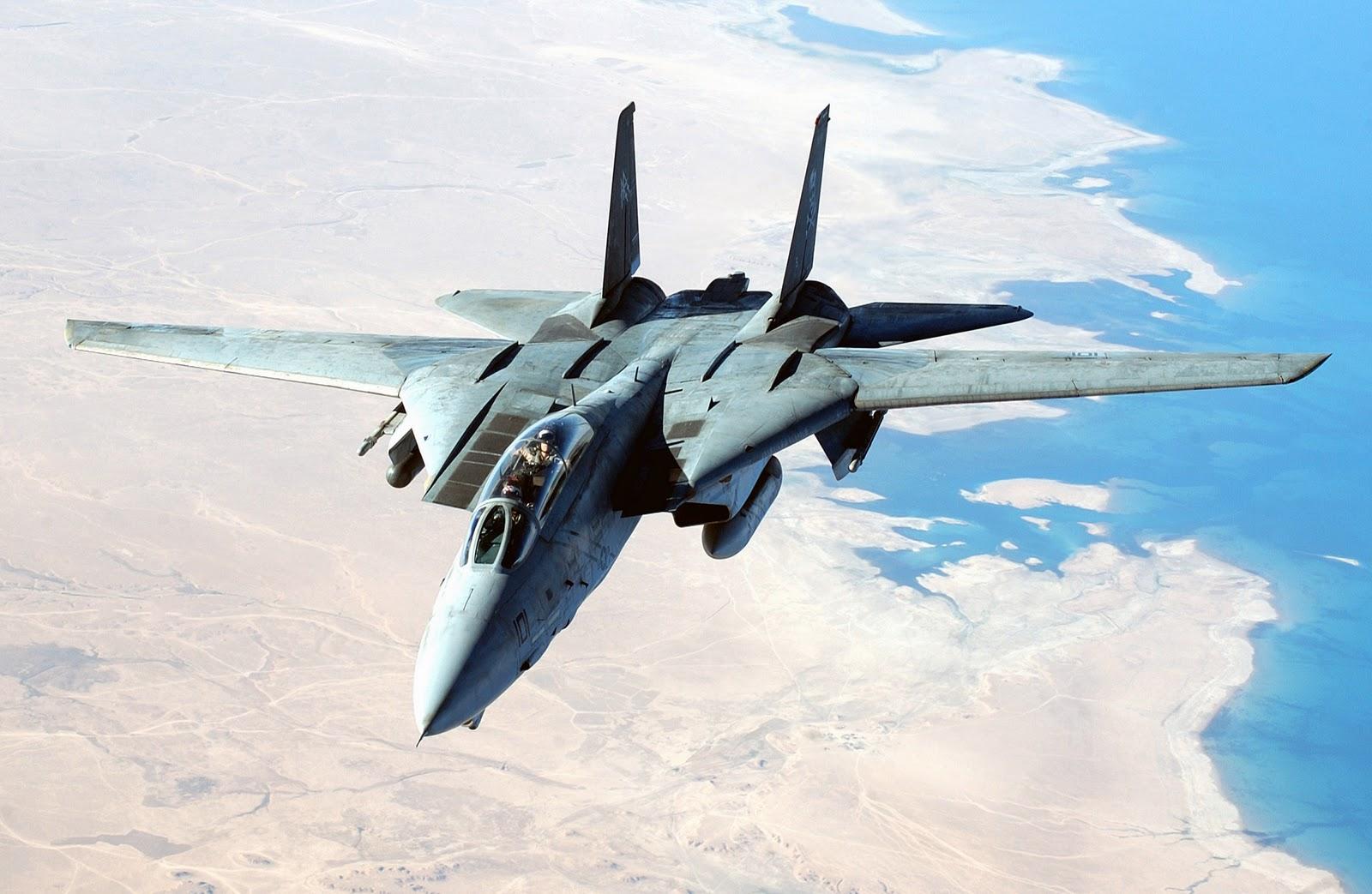14 tomcat jet fighter - photo #3