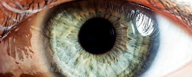 عِلاجُ طَفرةٍ تُسَبِّبُ العمَى عن طريقِ التّعديلِ الجينيّ