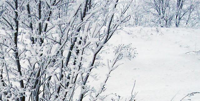 а за городом зима, зима, зима...
