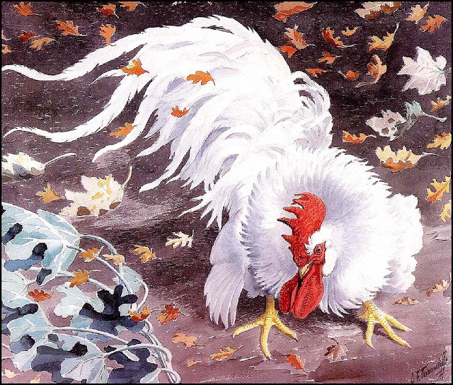 Charles F Tunnicliffe rooster