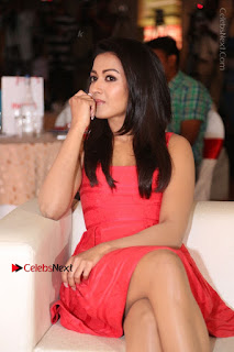 Actress Catherine Tresa Unveils Intex Air Conditioners  0114.jpg