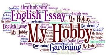 my hobby in english