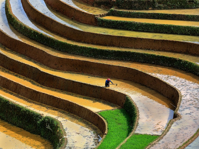 Mu Cang Chai beautiful enchanting in the water pouring season