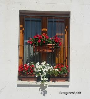 Balcón donde se ven macetas con flores rojas y blancas en una fachada blanca.