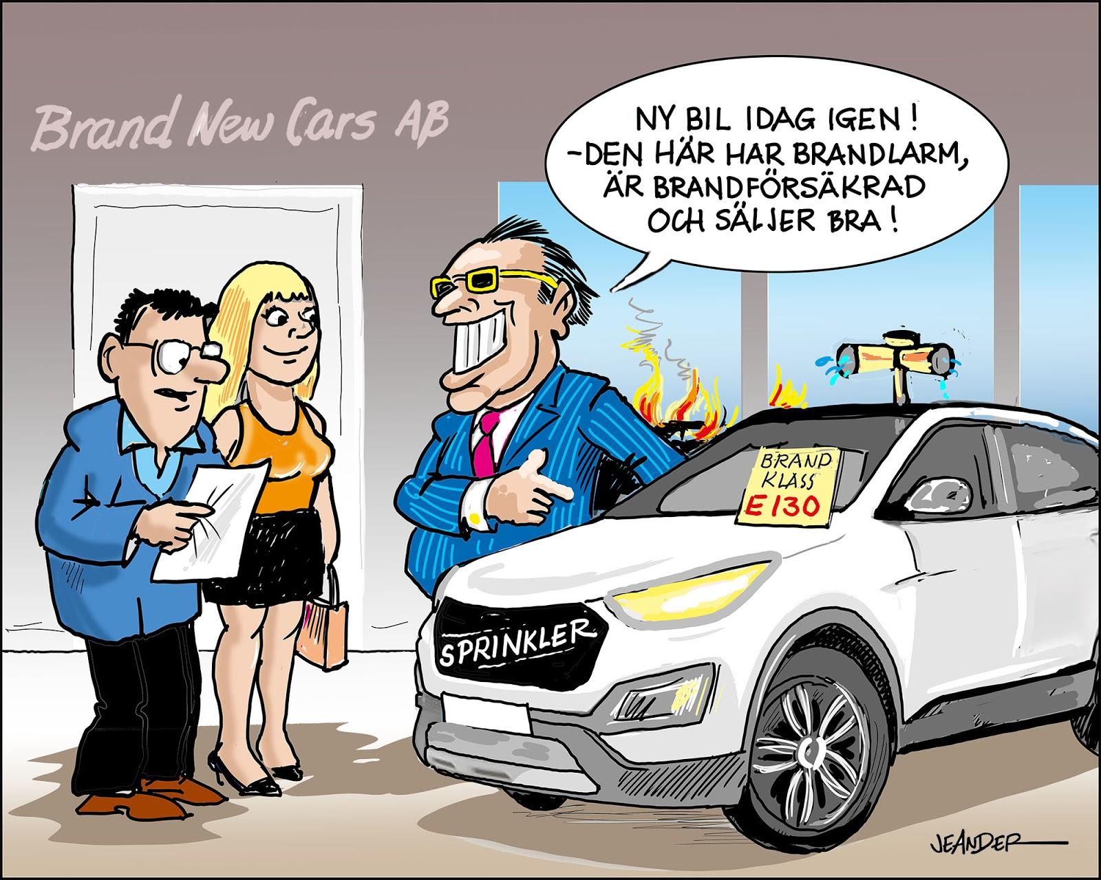 JEANDERS BILDBLOGG: Brinnande bilar!