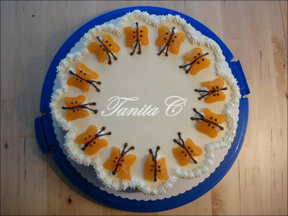 Schmetterling Kuchen Mit Mandarinen Appetitlich Foto