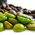How does green coffee bean extract work in the body