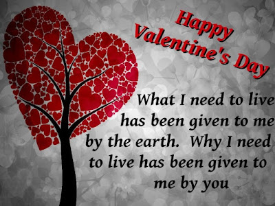 happy valentine day quotes - What To Write On Valentines Card