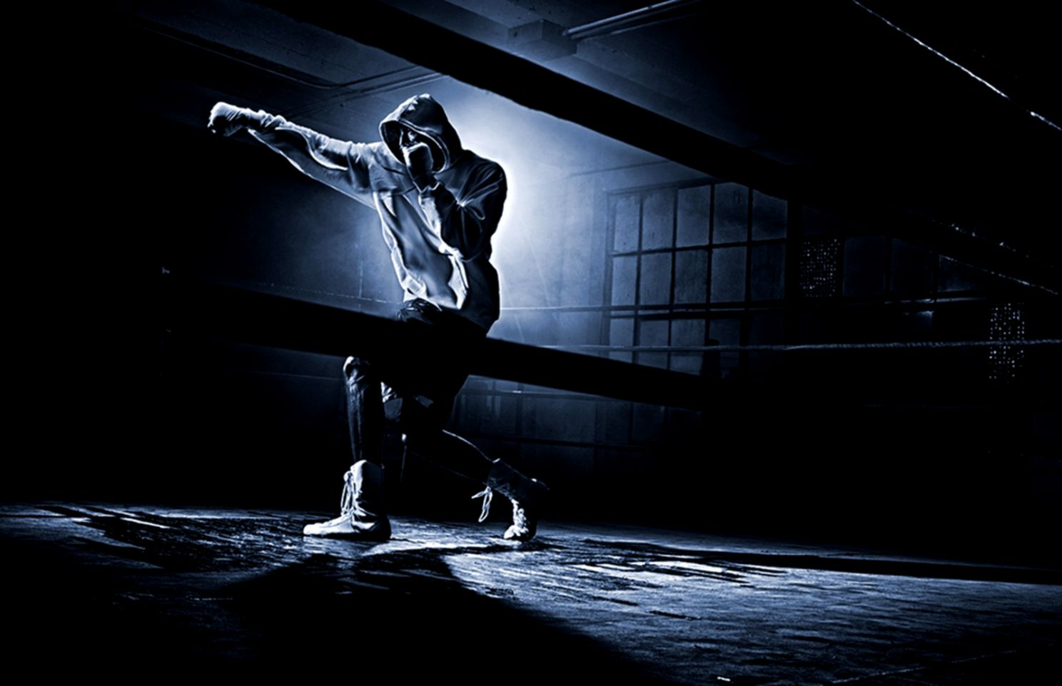 Fight Boxing Sport Wallpaper