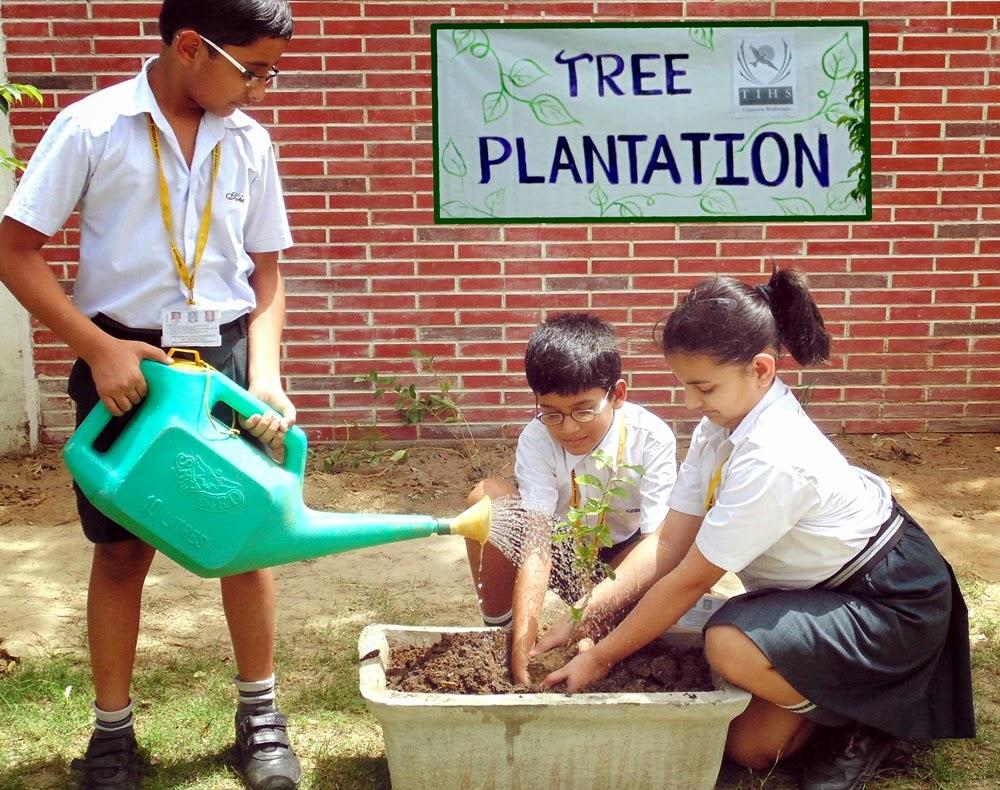 short essay on tree plantation