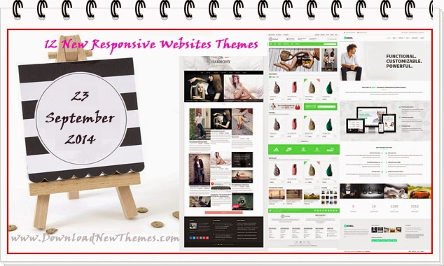 Premium Responsive Websites themes