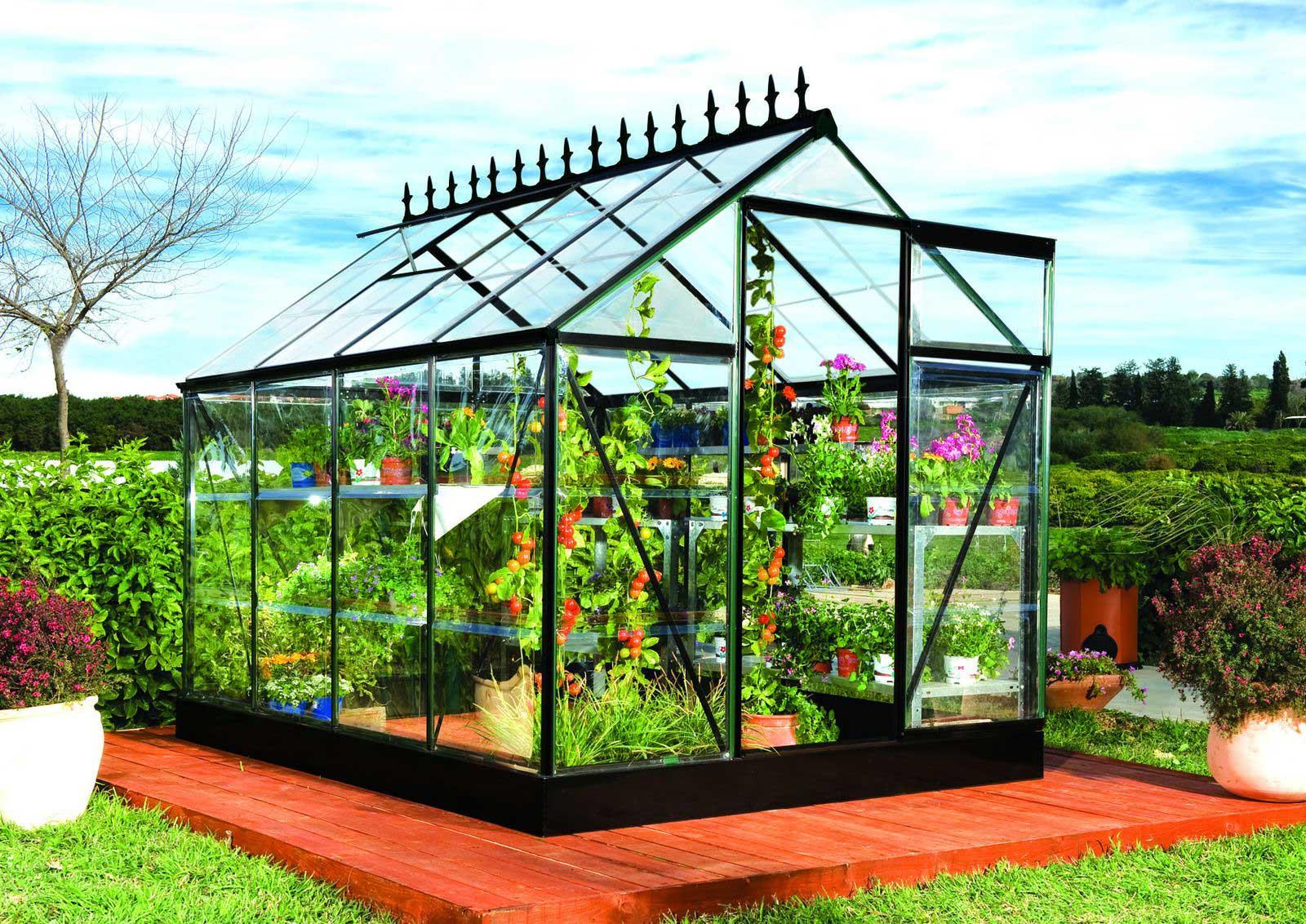 pr sentation les besoins des plantes et d une serre de. Black Bedroom Furniture Sets. Home Design Ideas