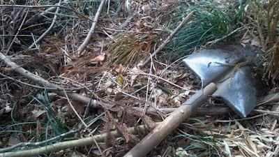 タケノコ掘り・狩り。写真中央にタケノコの頭があります。道具はエンピ。