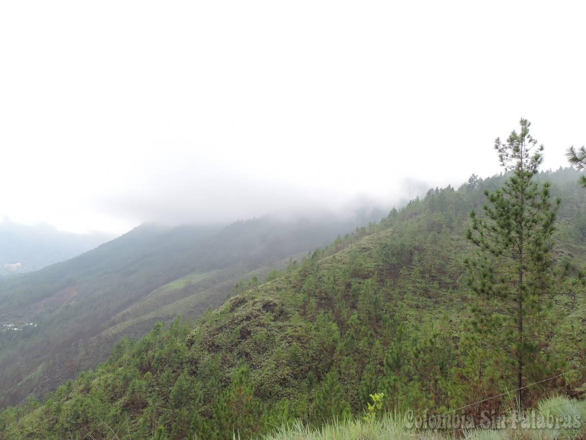 niebla sobre montaña del cerro quitasol