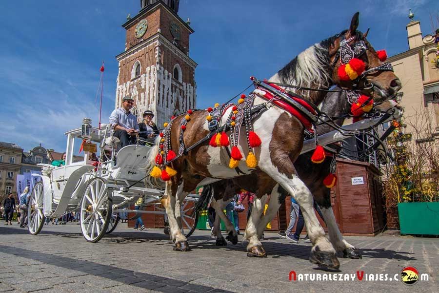 Carruaje típico en la Plaza Mayor de Cracovia
