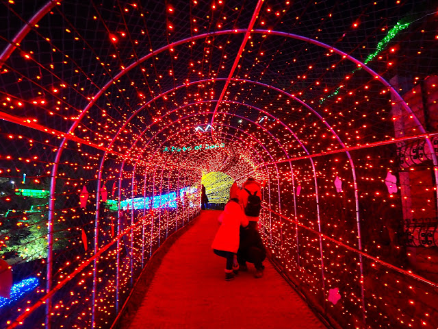 Festive red lights in the tunnel at the Light Festival at Boseong Green Tea Plantation, South Korea