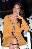 Lavanya Tripathi Latest Spicy Photo Gallery