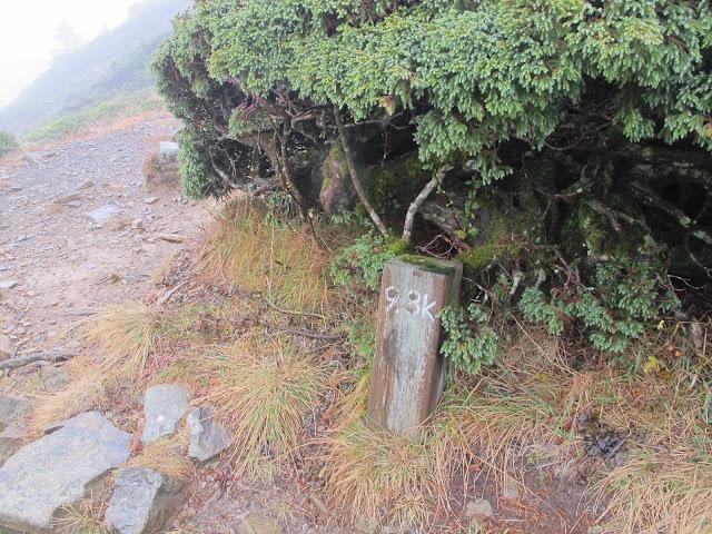 IMG 5976 - 台中登山│台灣第二高峰,雪山主峰、東峰兩天一夜攻頂!這兩天是我最難熬的一夜