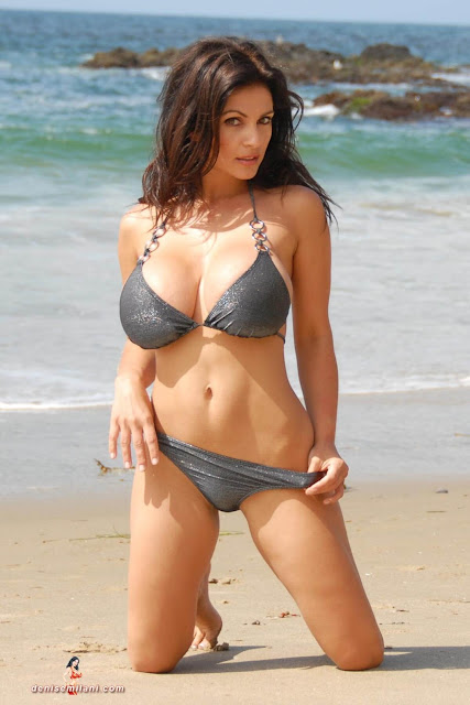 Denise-Milani-Beach-Silver-bikini-hottest-photoshoot-pics-13