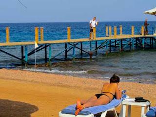 Wayne Dunlap Snorkling Off Resort Dahab Egypt