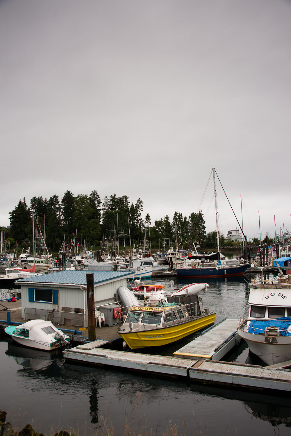 The North Coast Trail water taxi sitting in Port Hardy marina