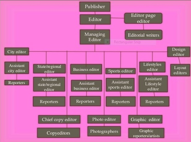 Structure of Various Department of Newspaper Organization
