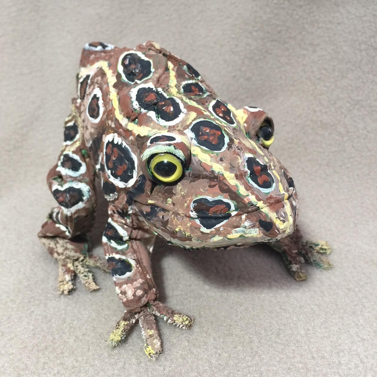 Argyle Fine Art: Anatomy of a Frog