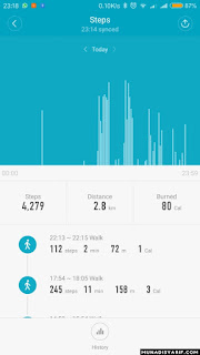 Pedometer Mi Band 2